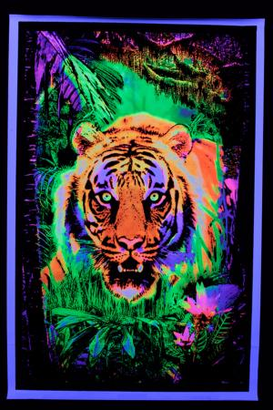 Poster fluo :  Jungle Tiger