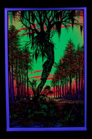 Poster fluo :  Swamp Mirage