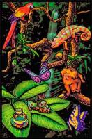 Poster fluo : Foret Tropicale