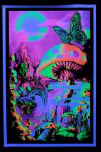 Poster psychedelic fluo : Vallée Magique
